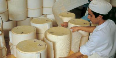 formaggio, pecorino 2